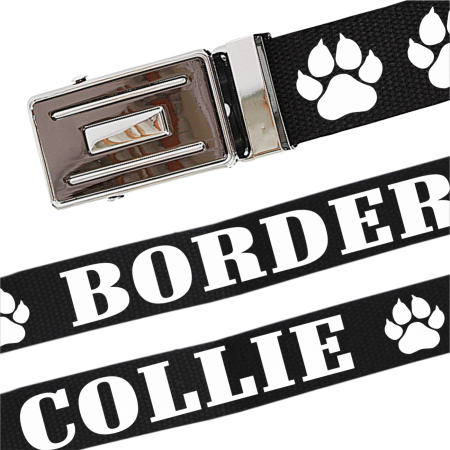 Gürtel Border Collie