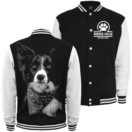 Baseballjacke Border Collie BOSS